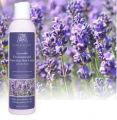 Lavender Hand Lotion 8 Oz.